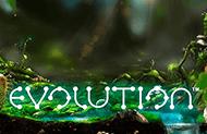 Evolution игровые автоматы 777 без регистрации