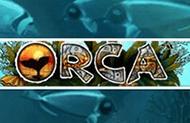 Orca лучшие аппараты