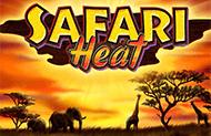 Safari Heat игровые аппараты с выводом денег