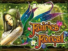 Аппарат Fairies Forest на деньги с выводом